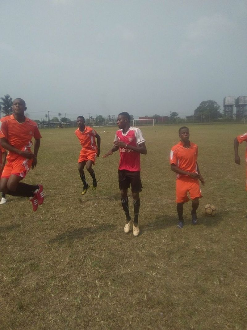 Photo shows Benin warriors players warning up